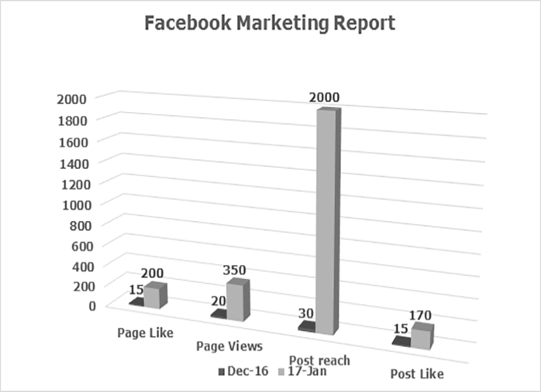 Facebook Marketing Report